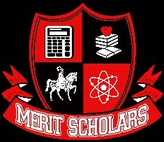 Merit Scholars Logo final.jpg